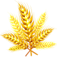 cropped-kisspng-grasses-tree-commodity-cereal-grain-5ad7e482a33c67.1425038115240981786686.png
